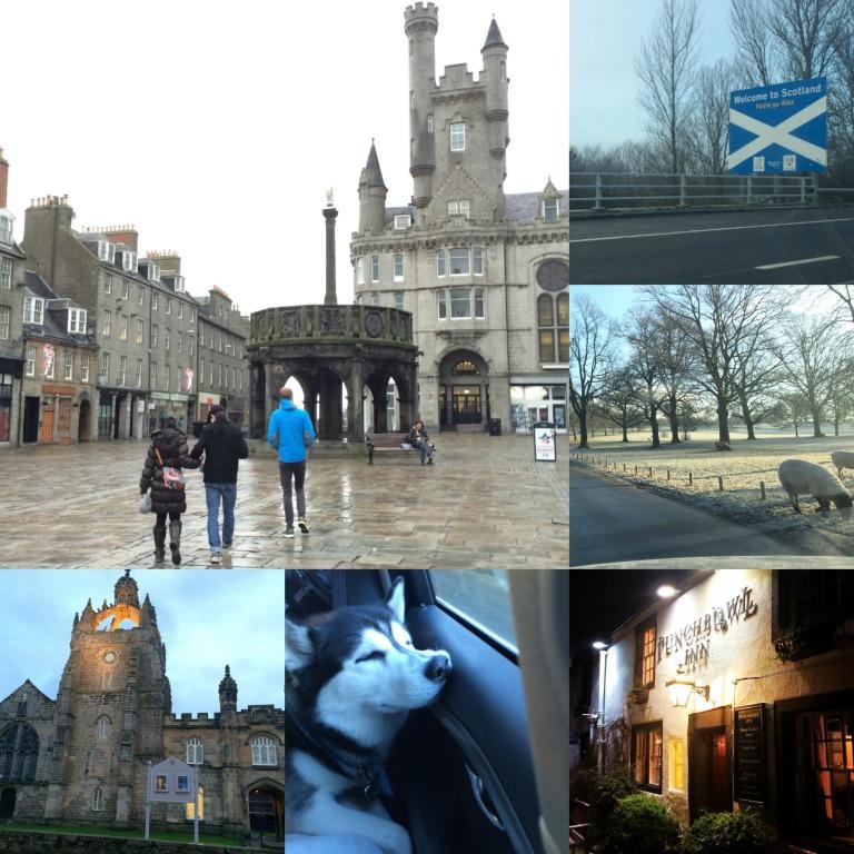 2015-01-02 scotlandia collage